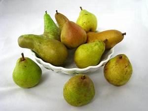 Conservation Des Poires : poire fiche poire et recettes de poire sur supertoinette ~ Melissatoandfro.com Idées de Décoration