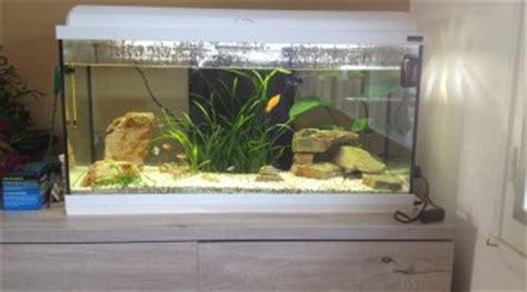 convertir un aquarium d eau douce en eau de mer