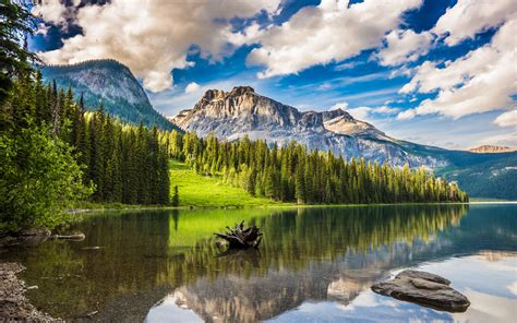 Download Wallpaper 3840x2400 Mountains Forest Lake Snag