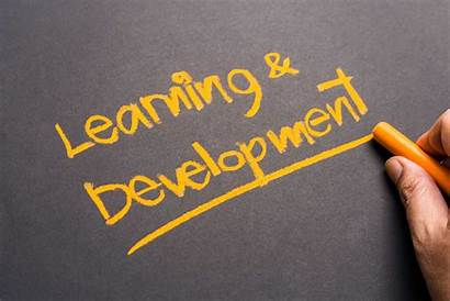 Learning Development Opportunities Important Why Success Business