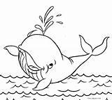 Coloring Whale Pages Orca Sperm Drawing Printable Jumping Getcolorings Cool2bkids Getdrawings sketch template