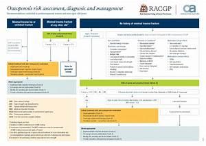 Health Professional Resources | Osteoporosis Australia