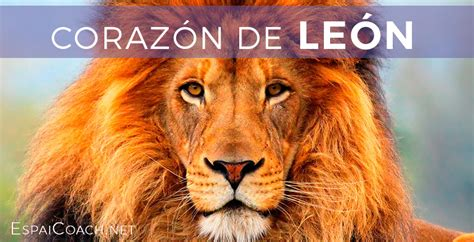 CorazÓn De LeÓn  Blog Emotivation