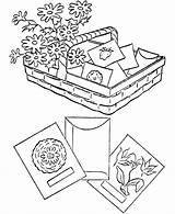 Coloring Spring Gardening Seeds Vegetable Sheets Activity Printable Plant Activities Planting Eucharist Popular sketch template