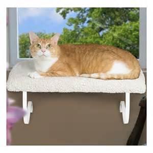 cat window perch cat window perch cat supplies rabbitmart