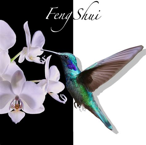 And meditation, yoga workout music, massage therapy music, relaxing music therapy, namaste, relaxing music. Feng Shui Spa Relaxing Mp3 Music Download | Music2relax.com