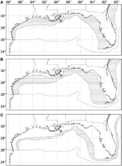 grouper gulf mexico goliath itajara distribution