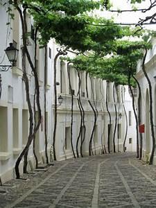 Street In Jerez  Spain Photo On Sunsurfer