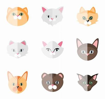 Cat Icon Packs Icons Pack Animal Clipart