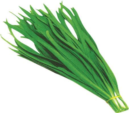 flat bread  chinese chives leeks cooking journal
