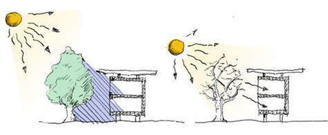 natuerlicher sonnenschutz