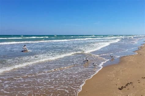 offbeat south padre island sights  destinations