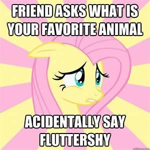 Socially Awkward Brony | My Little Pony: Friendship is ...