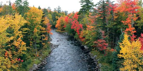 fall color top fall color drives in michigan and dates to go