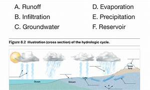 Solved  Activity 8 1  Examining The Hydrologic Cycle Use F