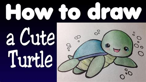 baby turtle drawing   draw  cute turtle youtube