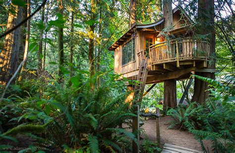 Treehouses : Treehouse Point