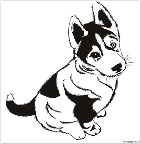 husky puppies coloring page  coloring pages