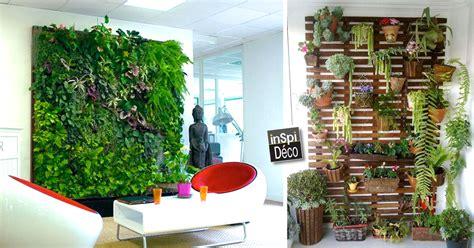 mur vegetal pour  decor tres original  idees video