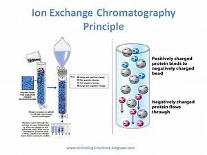 Ion Exchange Chromatography - Theory And Principle