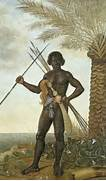 African Warrior   17th...