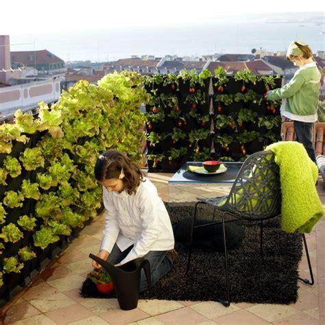 Chignons Im Garten Züchten by Vertikaler Garten Auf Der Veranda Gestalten