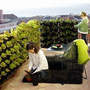 Vertikaler Garten Balkon : vertikaler garten auf der veranda gestalten ~ Frokenaadalensverden.com Haus und Dekorationen