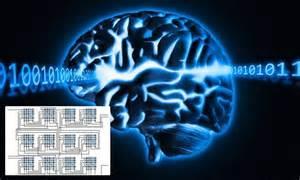 Computer Chip Humans Brains