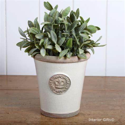 kew garden tom small plant pot ivory royal