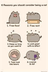 How To Choose Artwork by Impact Posters Pusheen Reasons To Be A Cat Largest