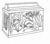 Fish Tank Coloring Aquarium Clipart Awesome Netart Background Drawings 52kb Webstockreview sketch template