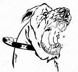 Angry Dog Vector Mean Illustration Depositphotos Shutterstock Illustrations sketch template