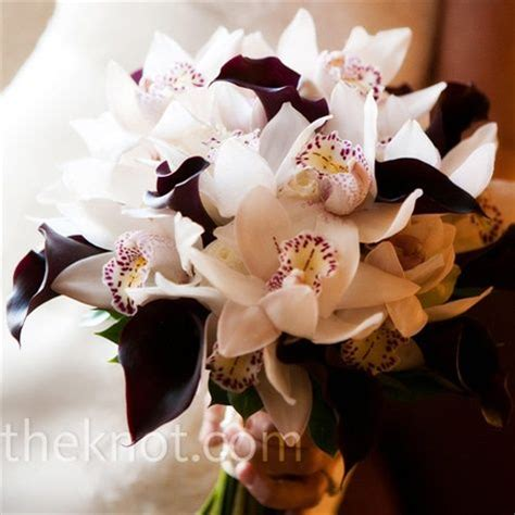 what to do when your orchid flowers fall ceremony bouquet inspiration dark purple calla lilies with white cymbidium orchids bride