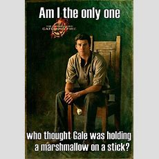 Best 25 Hunger Games Memes  Quotes And Humor