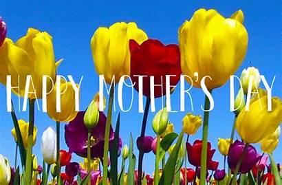 Mothers Animated Happy Wishes Gifs Spring Card