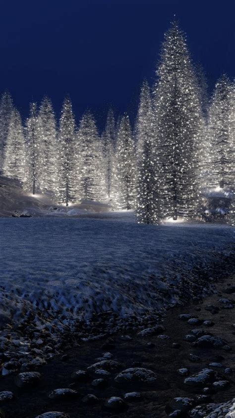 3d Winter Wallpaper by 3d Forests Nature Winter Wallpaper 50760