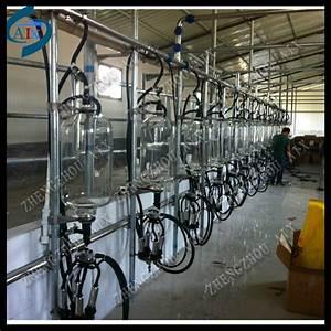 High Efficiency Herringbone Milking Parlour  Cow Milking Machine Equipment  Milking Machine