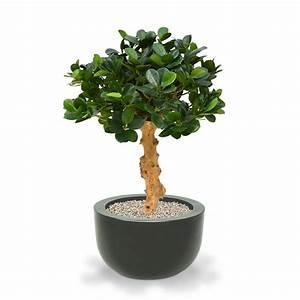 kunstlicher panda bonsai 60 cm auf fuss maxifleur With garten planen mit bonsai 60 cm