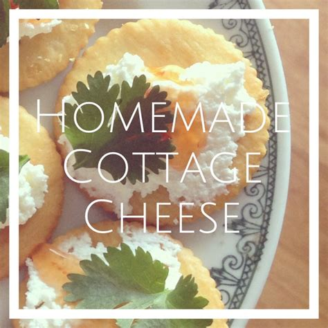 Make Your Own Cottage Cheese by How To Make Your Own Cottage Cheese Recipe