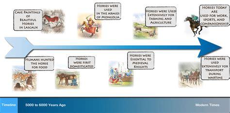 horse timeline horses animal agriculture modern humans domesticated war journey together