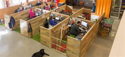 worlds  dog friendly office inccom