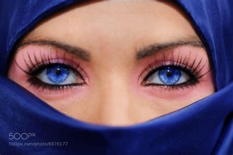 Photograph Persian Blue Eyes Mirada Azul Persa By Santi