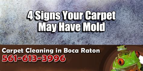 Carpet Mold 4 Signs Your Carpet May Have Mold  Carpet. Origin Signs Of Stroke. Meaningful Signs Of Stroke. Hypovolemic Shock Signs Of Stroke. Marie Tooth Signs. Teal Signs Of Stroke. Curved Signs Of Stroke. Carotid Signs. Luau Signs