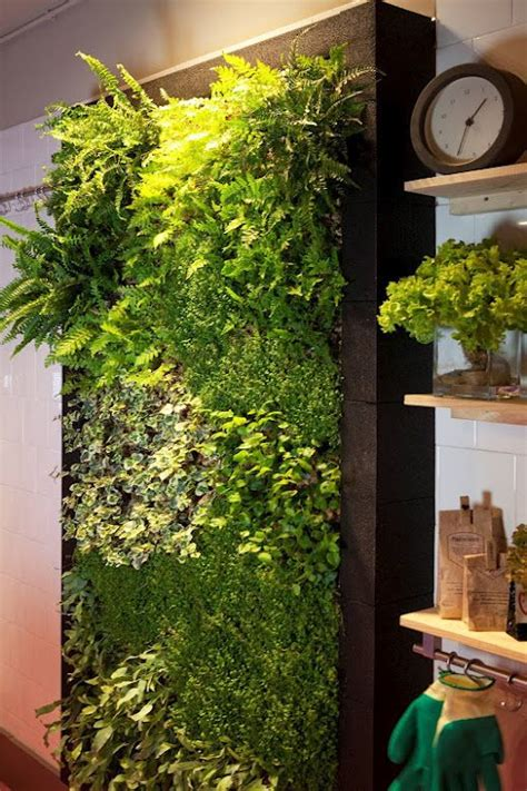 Vertical Gardening Indoors by 633 Best Images About Vertical Garden On Green
