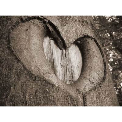 Hearts in Nature: A Valentine's Day Scavenger Hunt - Slow