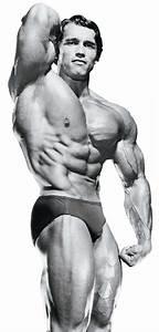 Arnold Schwarzenegger el Mr. Olympia que inició todo ...