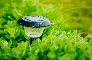 awesome lampe solaire jardin sans pile pictures design With carrelage adhesif salle de bain avec guirlande lumineuse 100 led