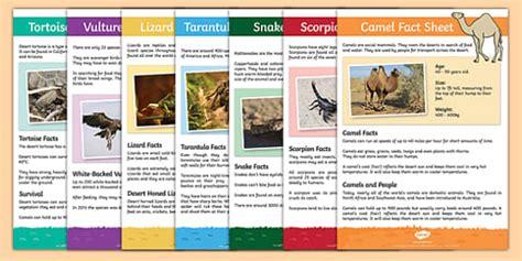 meerkat mail desert animals desert animals fact sheets