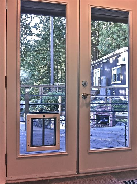 door with cat door built in screen patio door grande room simple ideas for