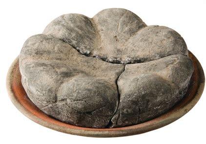 Bread N Budy bakeries in pompeii